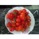 pickled cherry tomato 720 ml