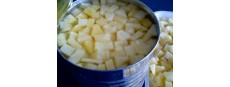 pieces pineapples in light syrup 30OZ